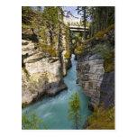 Canadá, Alberta, parque nacional de jaspe, Athabas Tarjeta Postal