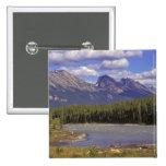 Canadá, Alberta, parque nacional de jaspe. Grande Pins