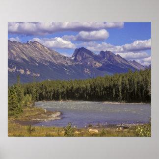 Canadá, Alberta, parque nacional de jaspe. Grande Póster