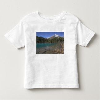 Canadá, Alberta, parque nacional de jaspe: JASPE, T-shirt