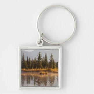Canadá, Alberta, parque nacional de jaspe Llavero Cuadrado Plateado