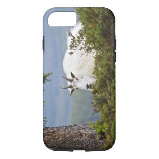 Canadá, Alberta, parque nacional de jaspe, montaña Funda iPhone 7