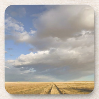 Canada, Alberta, Stand Off: Landscape with Drink Coaster
