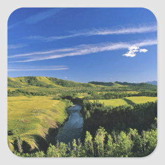 Canada, Alberta, The Highwood River Along the Square Sticker