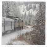 Canadá, Alberta. VÍA el tren de la nieve del carri Teja Ceramica