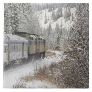 Canadá, Alberta. VÍA el tren de la nieve del carri Azulejo Cuadrado Grande