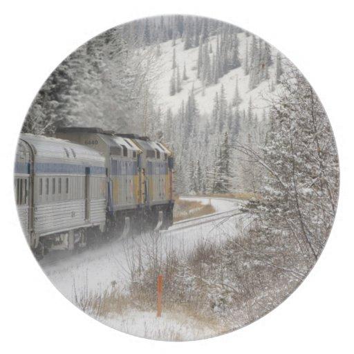 Canadá, Alberta. VÍA el tren de la nieve del carri Plato