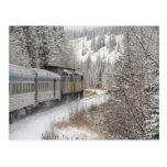 Canadá, Alberta. VÍA el tren de la nieve del carri Postal
