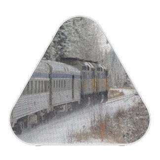 Canada, Alberta. VIA Rail Snow Train between Speaker