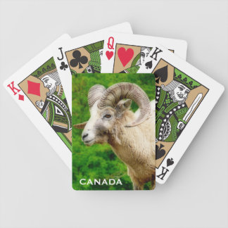 Canada - Bighorn Sheep  Photograph Bicycle Playing Cards
