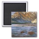 Canada, British Columbia, Alsek River Valley. 2 Inch Square Magnet