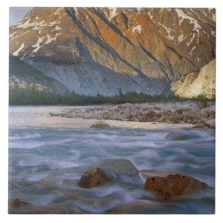Canada, British Columbia, Alsek River Valley. Ceramic Tile