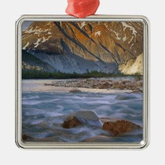 Canada, British Columbia, Alsek River Valley. Christmas Ornaments