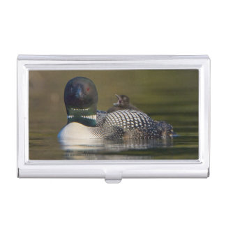 Canada, British Columbia,Common Loon, breeding 2 Business Card Case