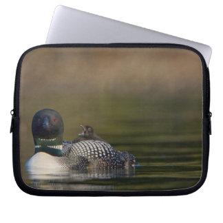 Canada, British Columbia,Common Loon, breeding 2 Computer Sleeves