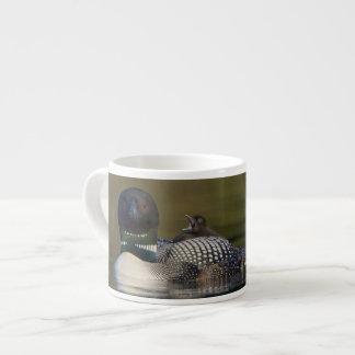 Canada, British Columbia,Common Loon, breeding 2 Espresso Cup