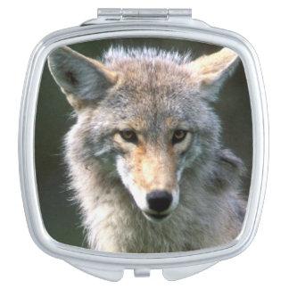 Canada, British Columbia, Coyote (Canis latrans) Compact Mirror