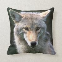 Canada, British Columbia, Coyote (Canis latrans) Throw Pillow
