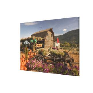 CANADA, British Columbia, Enderby. Log Barn Gallery Wrap Canvas