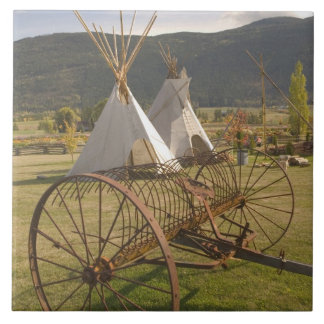 CANADA, British Columbia, Enderby. Tepees & Ceramic Tile