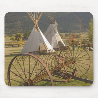 CANADA, British Columbia, Enderby. Tepees & Mouse Pad