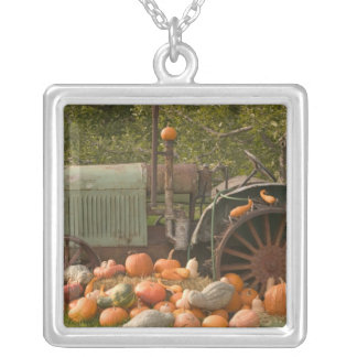 CANADA, British Columbia, Keremeos. Autumn / 2 Silver Plated Necklace