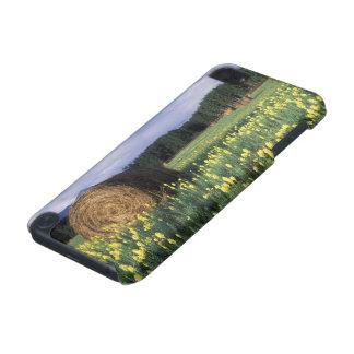 Canada, British Columbia, Kitwanga. Yellow iPod Touch 5G Case