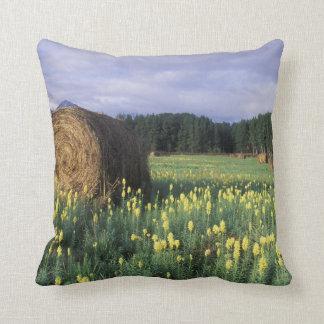 Canada, British Columbia, Kitwanga. Yellow Throw Pillow