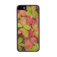 Canada, British Columbia, Mount Robson Carved® Maple iPhone 5 Slim Case
