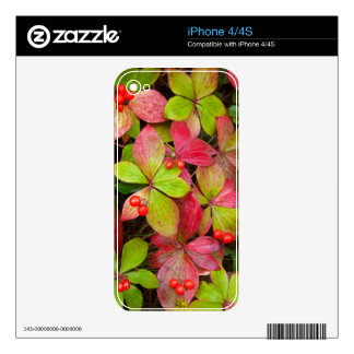 Canada, British Columbia, Mount Robson Skin For iPhone 4