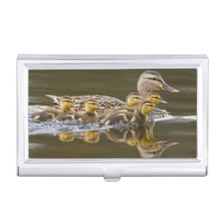 Canada, British Columbia near Kamloops, Case For Business Cards