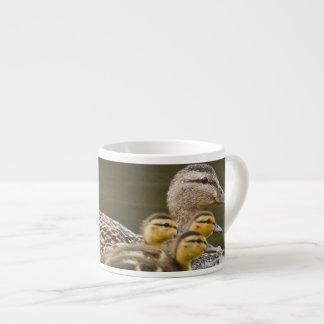 Canada, British Columbia near Kamloops, Espresso Cup