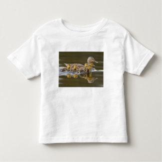 Canada, British Columbia near Kamloops, Toddler T-shirt