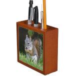 Canada, British Columbia, Red Squirrel Pine Pencil/Pen Holder