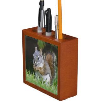 Canada, British Columbia, Red Squirrel Pine Desk Organizer