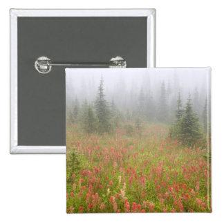 Canada, British Columbia, Revelstoke National Button