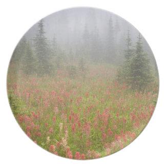 Canada, British Columbia, Revelstoke National Melamine Plate