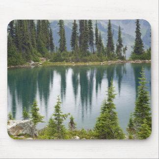 Canada, British Columbia, Revelstoke National Mouse Pad