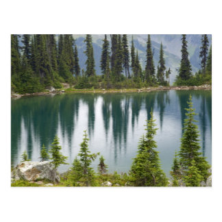 Canada, British Columbia, Revelstoke National Postcard