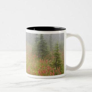 Canada, British Columbia, Revelstoke National Two-Tone Coffee Mug