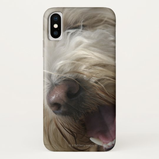 Canada, British Columbia, Vancouver Blackberry Bold Case