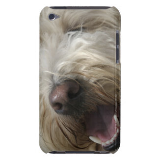 Canada, British Columbia, Vancouver iPod Touch Cover