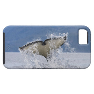 Canada, British Columbia, Vancouver Island, iPhone SE/5/5s Case