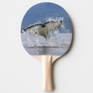 Canada, British Columbia, Vancouver Island, Ping Pong Paddle