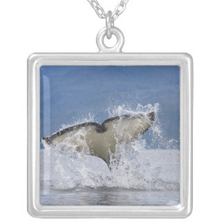 Canada, British Columbia, Vancouver Island, Silver Plated Necklace