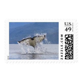 Canada, British Columbia, Vancouver Island, Stamp