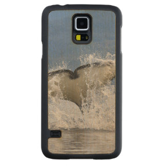 Canada, British Columbia, Vancouver Island, Carved® Maple Galaxy S5 Case