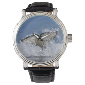 Canada, British Columbia, Vancouver Island, Wrist Watches