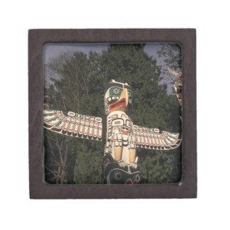 Canada, British Columbia, Vancouver.  Native Jewelry Box