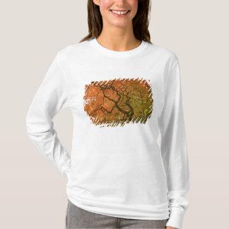 CANADA, British Columbia, Victoria. Autumn 2 T-Shirt